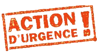 actions%20d'urgence%20tampon_edited.png
