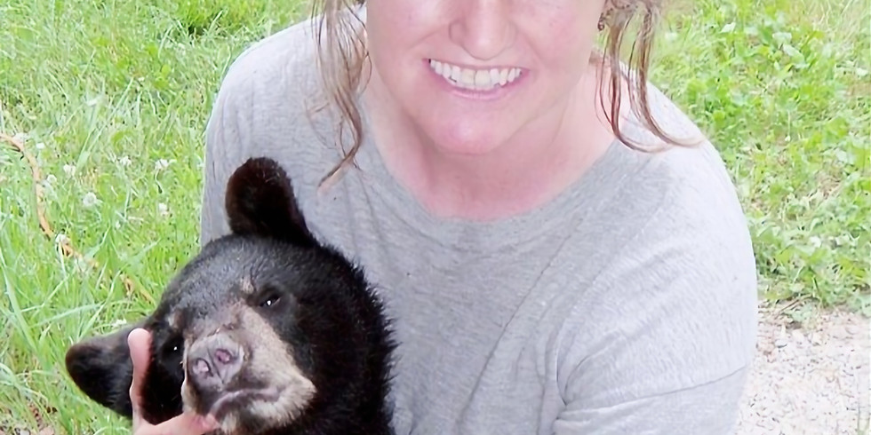 A Bears Second Chance