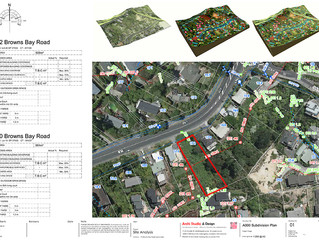 Browns Bay Project Site Analysis