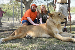 Petting a Lion in Mauritius