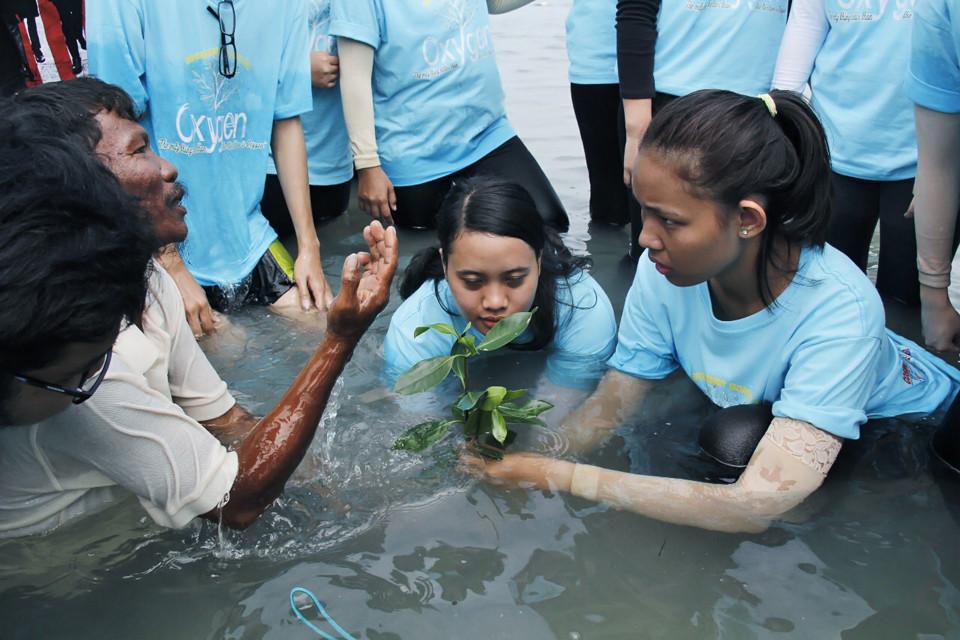 Proses penanaman mangrove.JPG