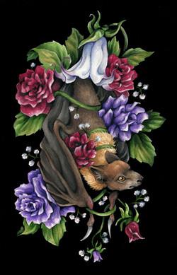 Forbidden Fruit Bat