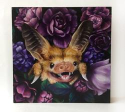 Peeking Bat