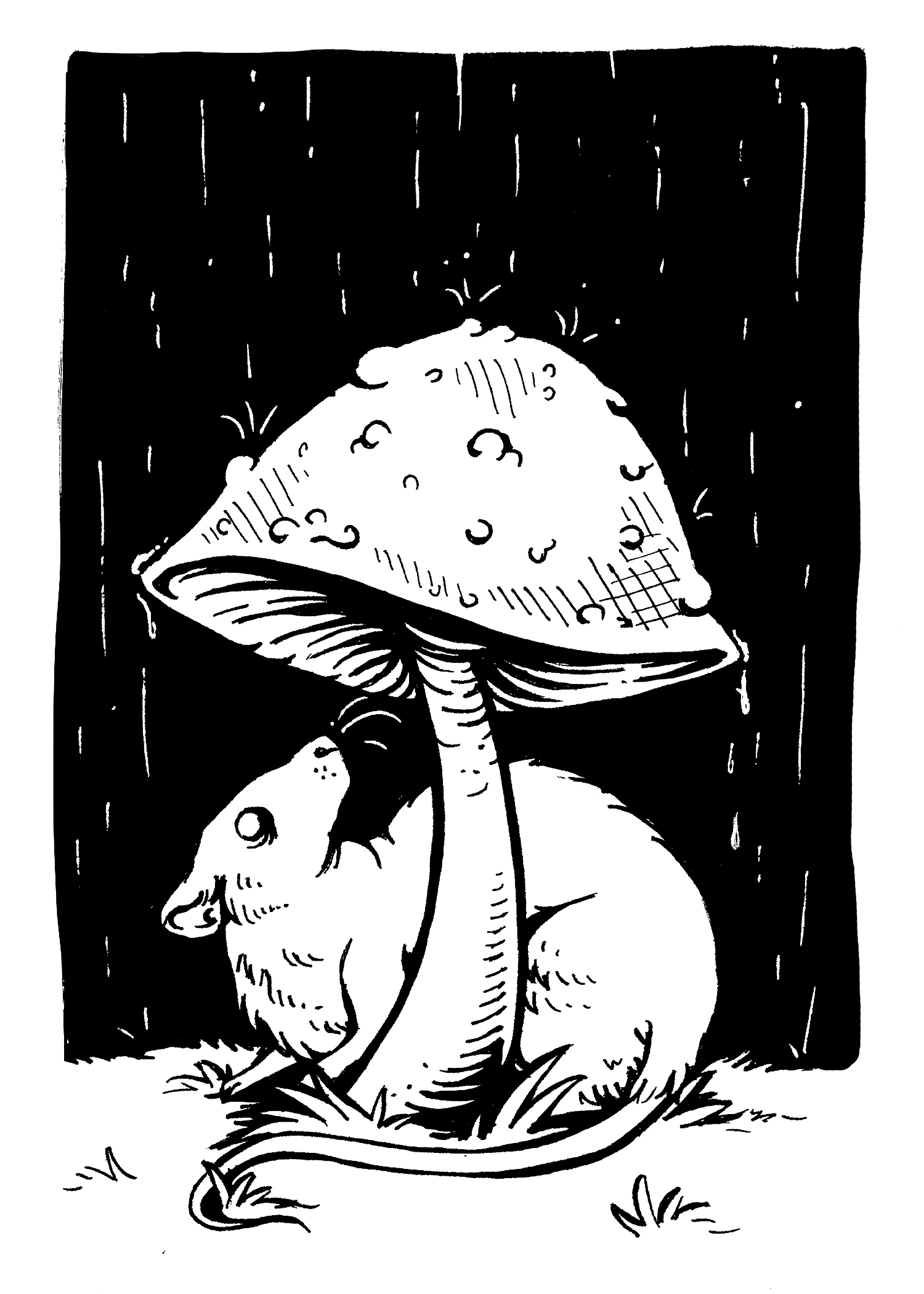 MushroomRatBW5x7