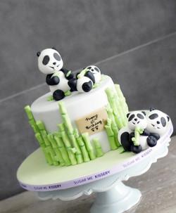 kids_panda2