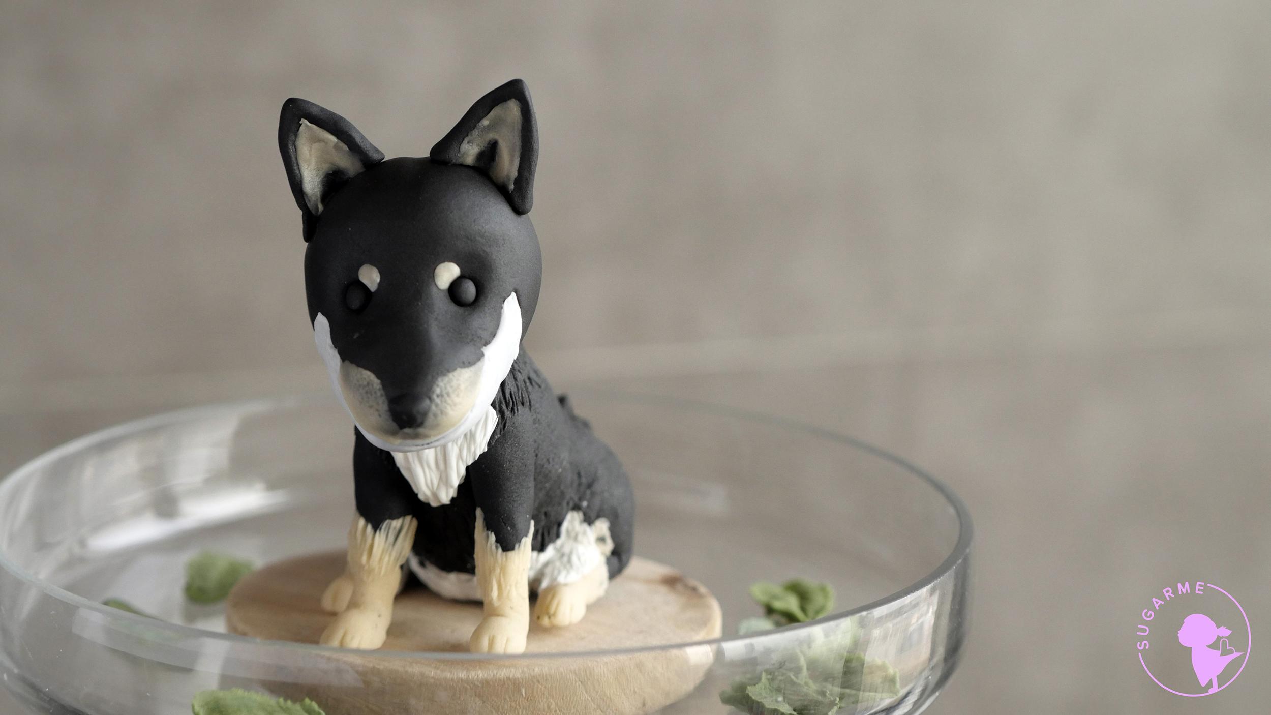 n_dog (2)