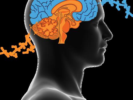 Beyniniz Size Nasıl Oyunlar Oynar?