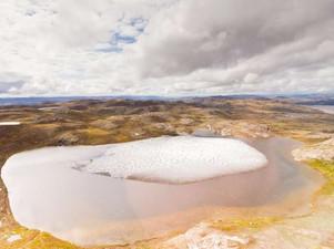 Yeni Fosil Bitkiler, Grönland'ın Bir Zamanlar Buzsuz Olduğunu Ortaya Çıkardı