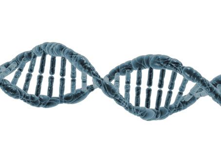 İlk Kez Bir Göktaşı İçinde Tam Bir Protein Molekülü Bulundu