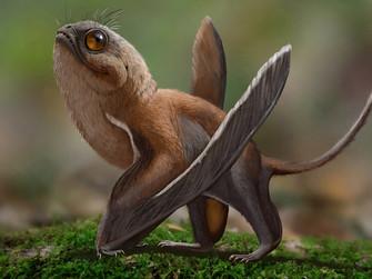 Bilim Yeni Bir Dinozor Keşfediyor ve Çok Sevimliler