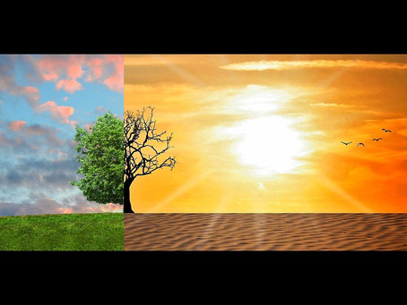 İklim Değişikliğini Önlemek İçin Çok Mu Geç?
