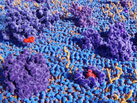 Tamamen Yeni Bir Biyomolekül Sınıfı, Tüm Yaşam Formları İçin Ortak Olabilir