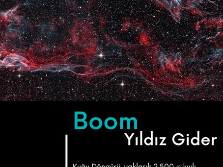 Günün Fotoğrafı: Boom... Yıldız Gider