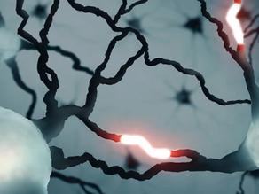 İnsan Beyninde Daha Önce Hiç Görülmemiş Bir Sinyal Türü Tespit Edildi