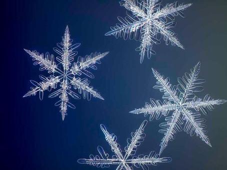 Kar Tanelerinin Şimdiye Kadar Çekilmiş En Yüksek Çözünürlüklü Fotoğrafları