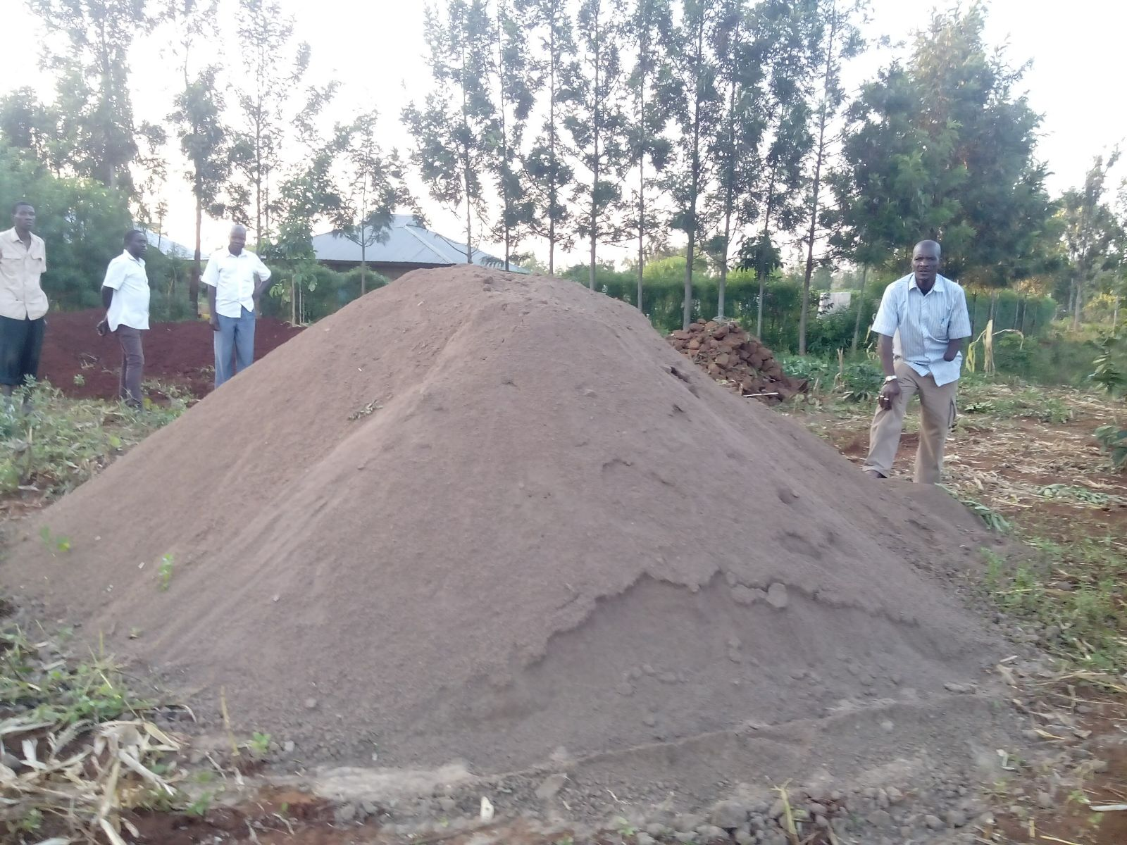 Construction soil