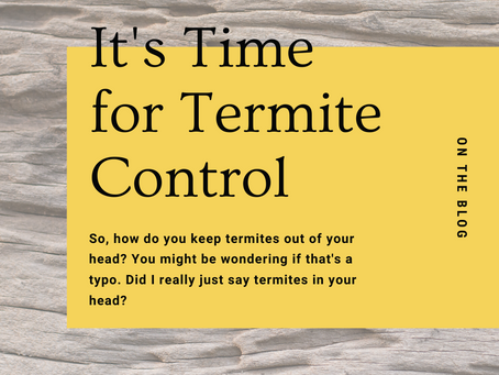 It's Time for Termite Control