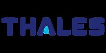 thales-750x375.png