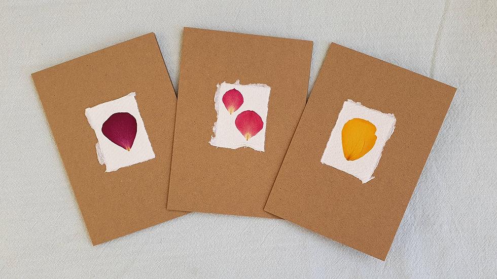 Pressed flower cards (Rose Multipack x3)