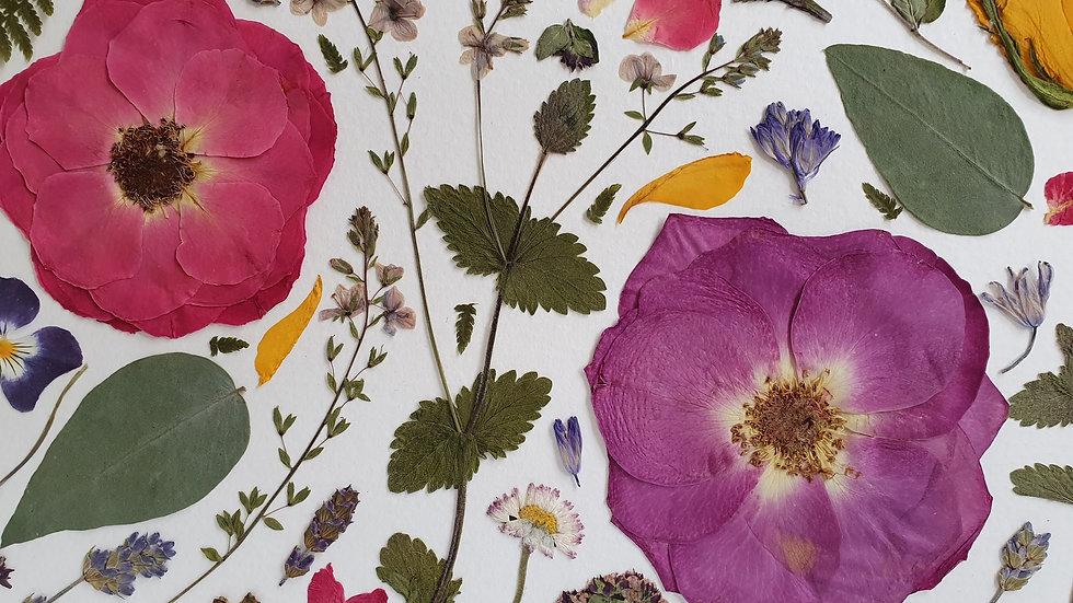 'Rambling Rose' Pressed Flower Frame