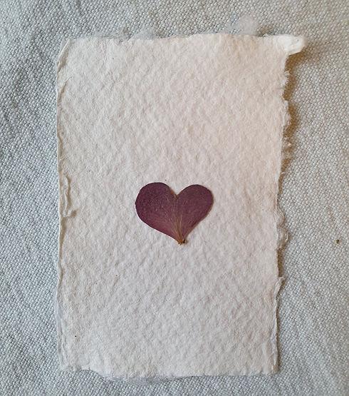 pressed hydrangea heart petal