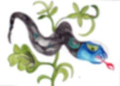 Bapi father snake