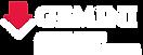 gemini logo-02.png