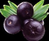 380-3800721_aca-berry.png
