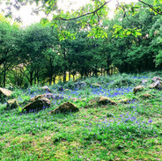 4,000 Year Old Bronze Age Hut Circles
