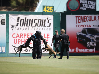 Lake Elsinore Storm Fundraiser for Paws4Law