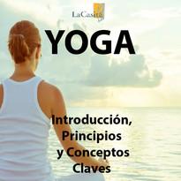 yoga_Mesa de trabajo 1.jpg