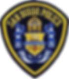 sdpd badge.jfif