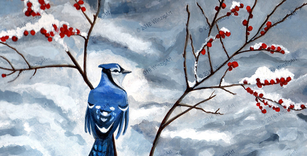 Blue Jay - Archival Print