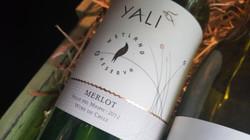 Wine - Merlot