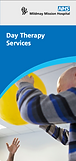 Day Therapy leaflet cover image