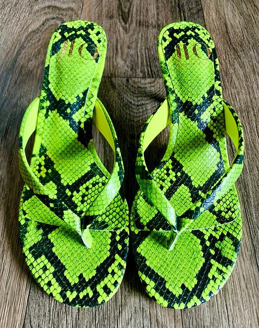JLo Snake Print Sandals - Size 6.5