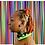 Thumbnail: Neon Diary Earrings