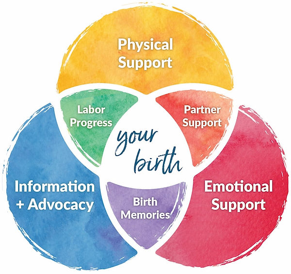 doula-in-kalamazoo-venn-diagram-birth-ka