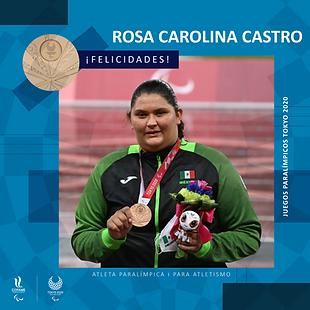 ROSA CAROLINA CASTRO_Mesa de trabajo 1.png