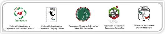 federaciones en linea.png