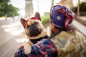 Duck and Zeus the Biker Frenchie!