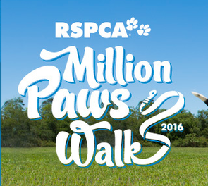 Mornington Million Paws - Here we come!