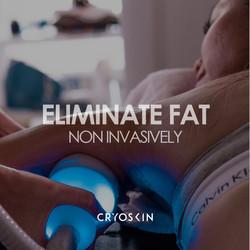 Eliminate Fat Non Invasively Cryoskin 60