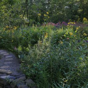 Designing Sanctuary Gardens