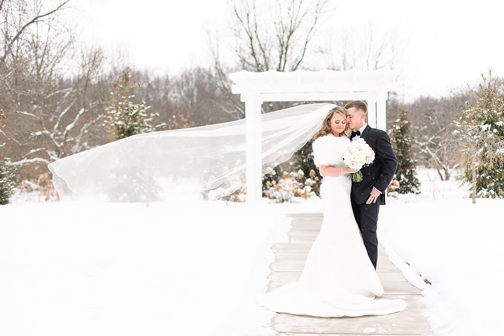 Josh and Andrea wedding photography husband and wife photographer team michigan venue Bay Pointe Woods shelbyville snow winter wedding bride and groom veil shot