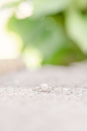engagement ring on stone at milham park kalamazoo michigan
