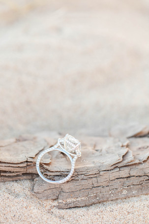 Engagement ring on driftwood in sand South Haven Beach Michigan