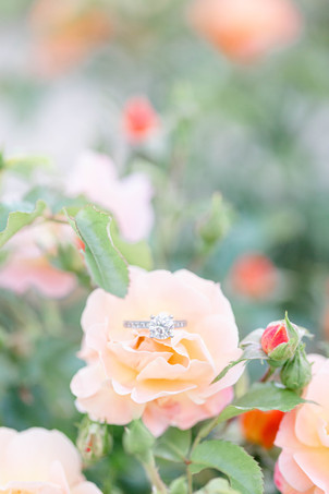 engagement ring on peach flower at The Tridge Midland Michigan