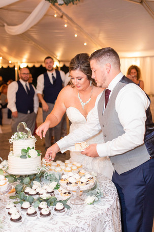 Bride and groom cutting the cake cute couple wedding American 1 event center Jackson michigan