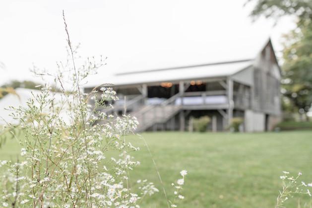 hidden vineyard wedding barn flowers